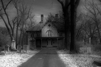 The-Gravediggers-House-trees